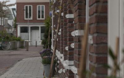 Terugblik: Aanleg verticale tuin Palmstraat/Barendsestraat