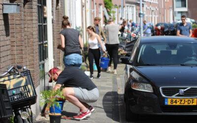 Terugblik: Groene Oase (Kamper- en Linschotenstraat)